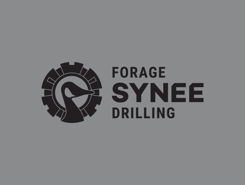 Logo en noir de Forage Synee Drilling